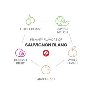 taste-of-sauvignon-blanc-by-winefolly
